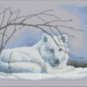 35123 Wolf in Snow